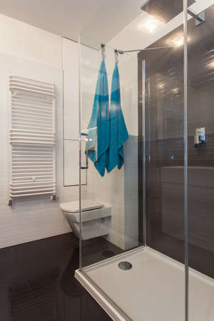 Minimalist apartment - glass shower in a modern bathroom Stock Photo - 17288519