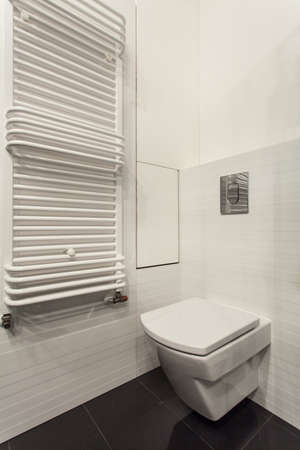 Minimalist apartment - wc in white bathroom interior Stock Photo - 17288517