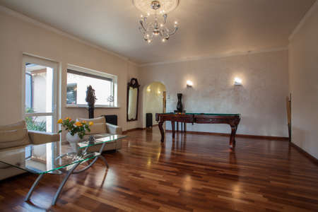 snooker room: Cloudy home - living room interior with billiard table
