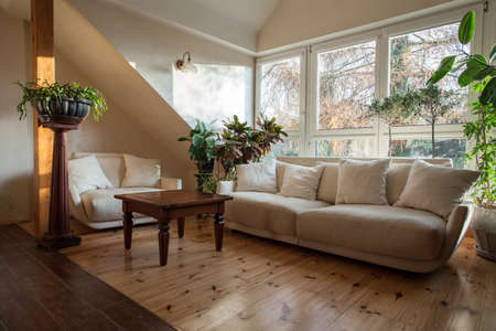 cloudy home: Cloudy home - bright attic with huge sofa and plants Stock Photo
