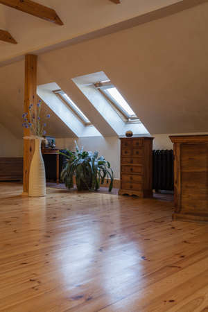 Cloudy home - attic with wooden finish, classic interior photo