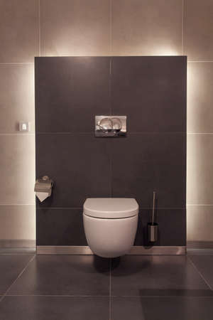 private public: Woodland hotel - Modern toilet in a luxurious interior Stock Photo