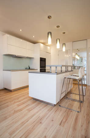 Stylish flat - Small and cosy kitchen in modern house Stock Photo - 17749207