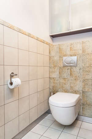 Spacious apartment - Toilet in bathroom with patterned tiles Stock Photo - 18439755