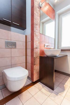 Spacious apartment - Toilet, wash basin and mirror in bathroom Stock Photo - 18439770