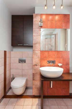 Amplio apartamento - Wc, lavabo y espejo recipiente en el ba�o photo