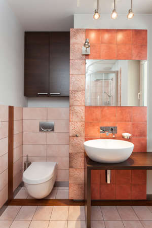 bathroom mirror: Spacious apartment - Wc, vessel sink and mirror in bathroom