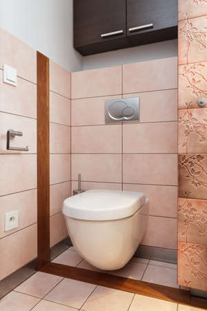 Spacious apartment - Wc in contemporary bathroom, toilet Stock Photo - 18420431
