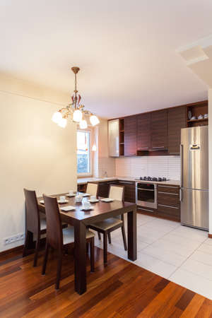 fridge lamp: Spacious apartment - Interior of contemporary kitchen and dining room