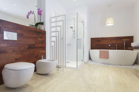 African style bathroom with exotic wood and free standing bath. Stock Photo - 18504951