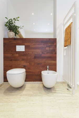 Toilet and a bidet in bathroom with wooden wall Stock Photo - 18505034