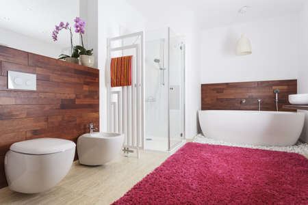 Interior of a modern bathroom with pink carpet and wooden wall