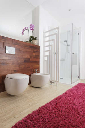 carpet wash: Bathroom with a shower and pink carpet Stock Photo