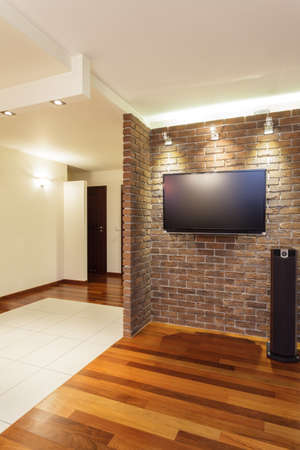 entrance hall: Spacious apartment - brick wall in spacious modern house