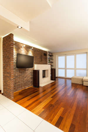 Spacious apartment - cosy living room with a fireplace Stock Photo - 18522881