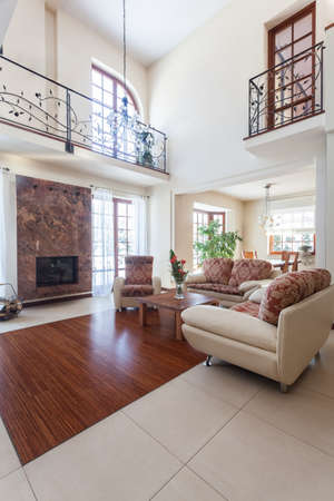 furnished: Classy house - interior of an elegant living room