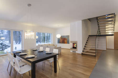 living hall: Designers interior - dining room in modern minimalistic house