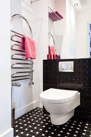 Vibrant cottage - Toilet in a modern bathroom Stock Photo - 18732445