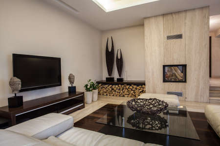 modern living room interior: Travertine house: Braided decoration in the living room