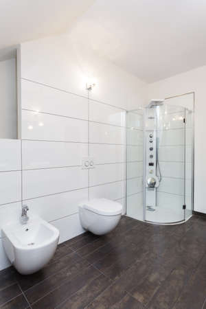 Grand design - bathroom with white walls and equipment photo