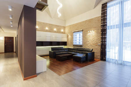 Grand design - living room with brick wall Stock Photo - 19058436
