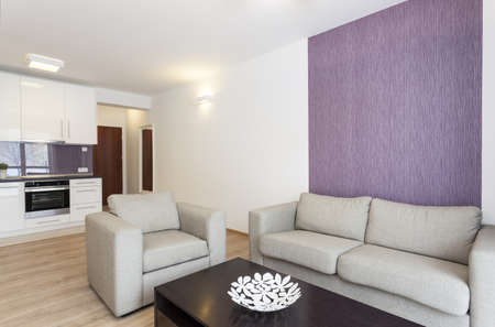 Cosy flat - grey sofa in white and violet living room photo