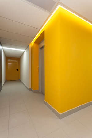 Vibrant hallway of contemporary interior photo
