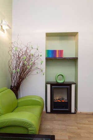 Interior of green room with colorful books Stock Photo - 19199615