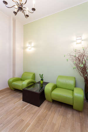 Modern comfortable and green armchair, vertical view Stock Photo - 19265074