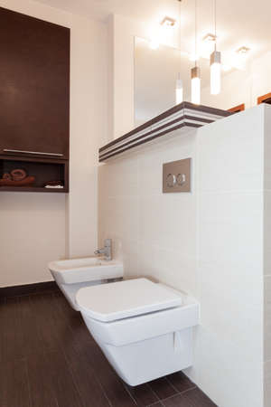 Grand design - toilet and bidet photo
