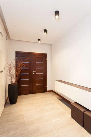 Grand design - corridor and main door Stock Photo - 19376572