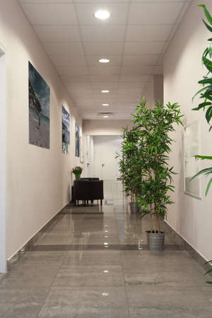 Interior of a contemporary new office building Stock Photo - 19445560