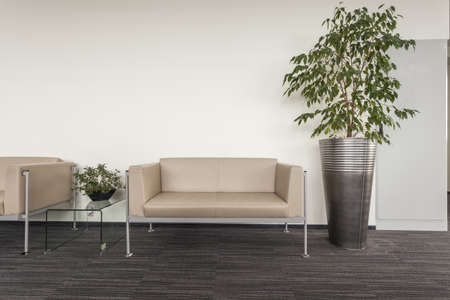 Modern sofa standing in an office hall photo