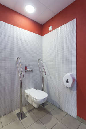 Toilet for a disabled people, modern interior photo
