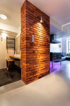 bathroom interior: Brick wall in a corridor of modern apartment