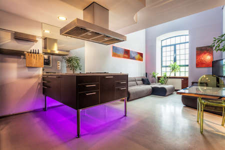 Modern loft interior, kitchen and living room photo