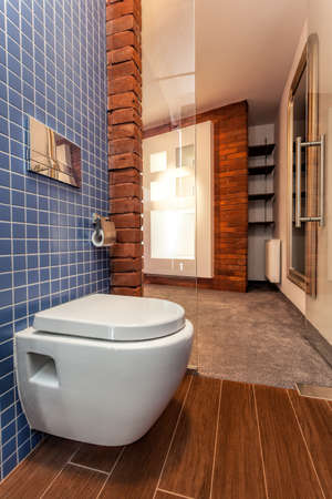 Toilet seat in small cosy bathroom Stock Photo - 20573704