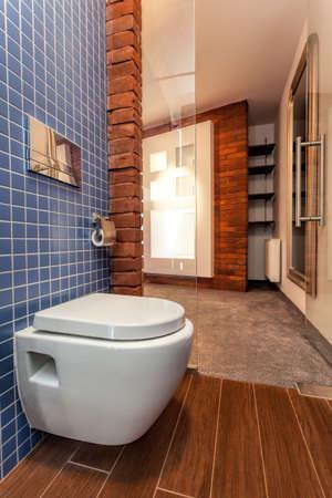Toilet seat in small cosy bathroom Stock Photo - 20573704