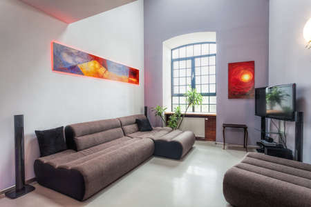 living room interior: Modern living room interior with comfortable grey sofa