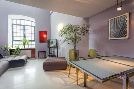 Interior of a modern house, living and dining room Stock Photo - 20639439