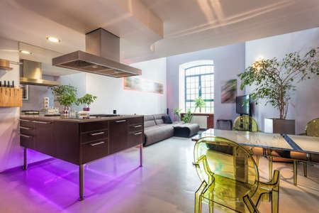 Interior of a modern loft with kitchen and living room Stock Photo - 20863937