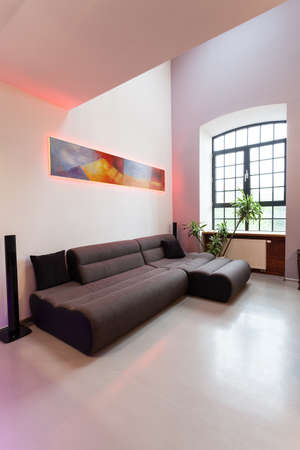 Dark comfortable sofa in a new living room Stock Photo - 20863985