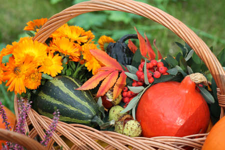 Wicker basket with decorative pumpkins and colorful flowers photo