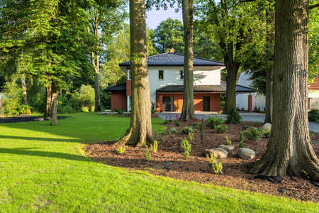 A modern house located in a garden full of trees Stock Photo - 20903960