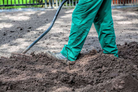 manure: Man holds rakes and froks a ground