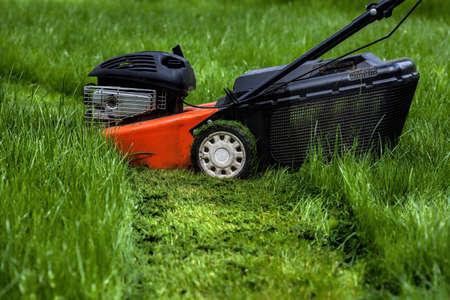 paysagiste: Tondeuse debout dans un jardin