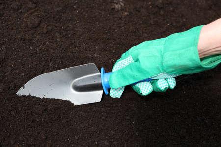 mounds: Preparing fresh soil for planting seedlings