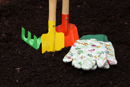 horticulturist: Colorful kit for planting seedlings Stock Photo