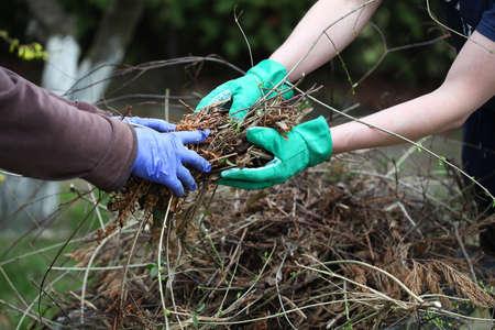 庭師は芝生の清掃に協力します。 写真素材