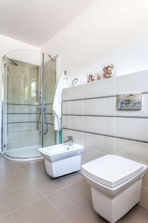 bidet: Bright space - white and grey bathroom with a toilet, a bidet and a shower